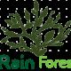 Rain forest Logo
